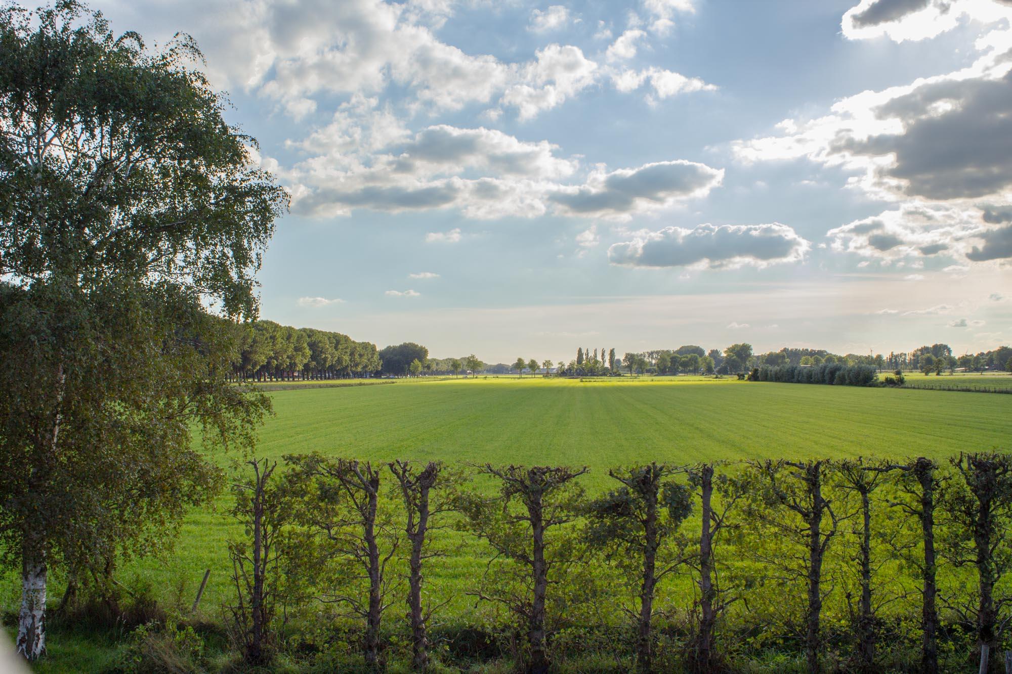 Uitzicht Italiaanse landgoedwinkel Landrucci over de Kromme Rijnstreek