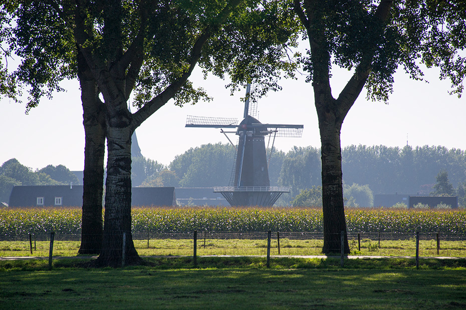 Wandelen in de Kromme Rijnstreek tijdens de vergaderpauze op de duurzame vergaderlocatie Landrucci Utrecht Werkhoven