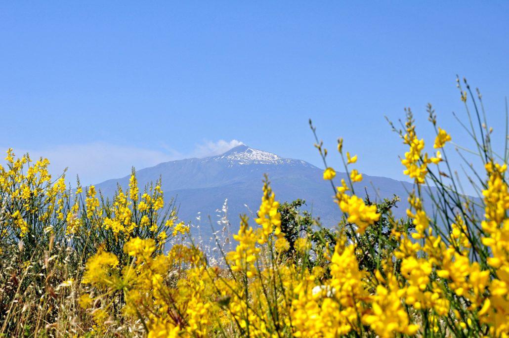 Etna Sicilië Italië-bedrijfsreizen