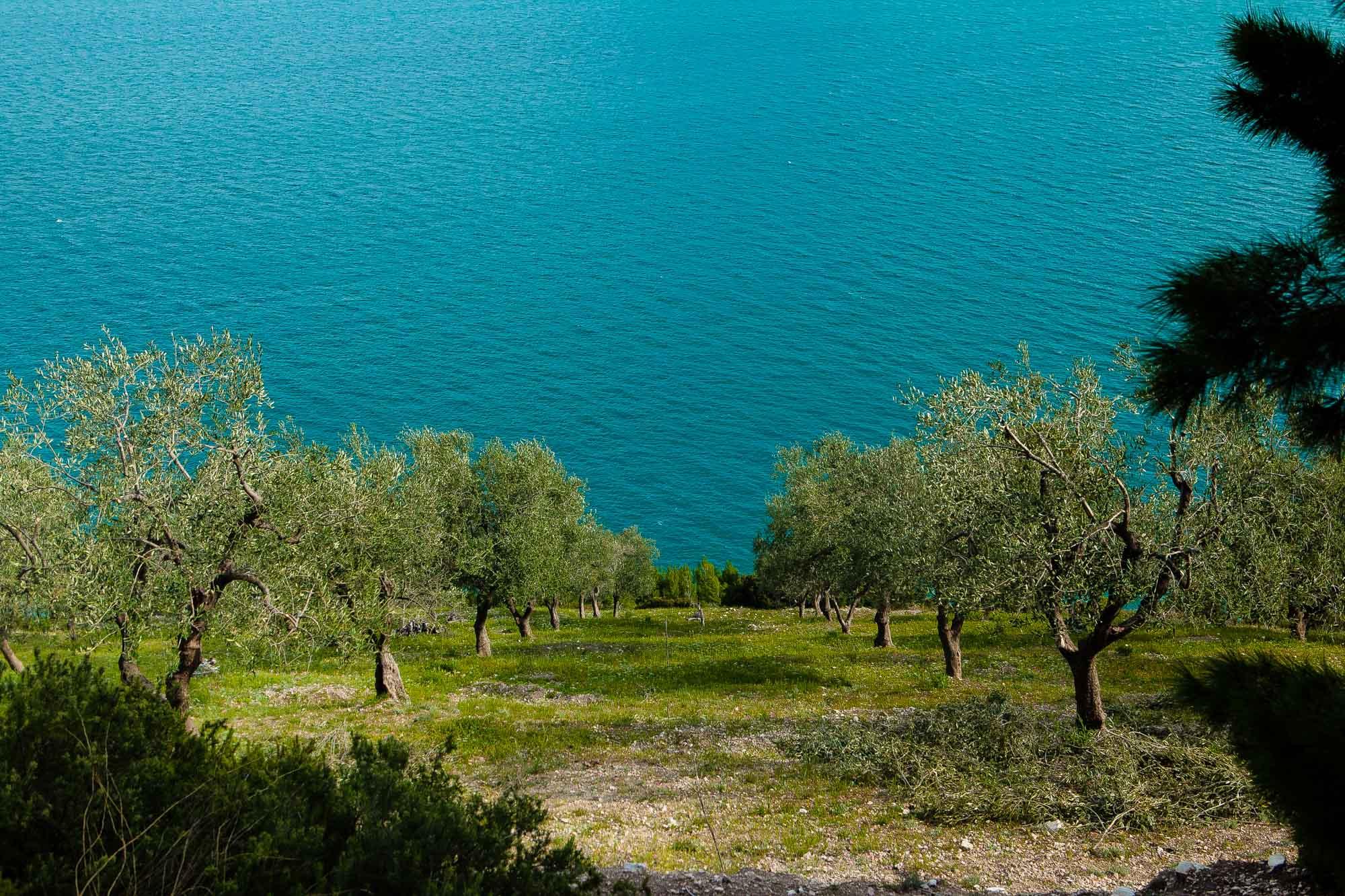 Wandelvakantie Italië Cinque Terre