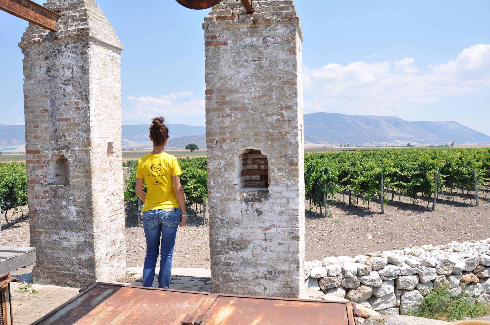 Wijnboerderij Cantina Ariano Puglia Italië